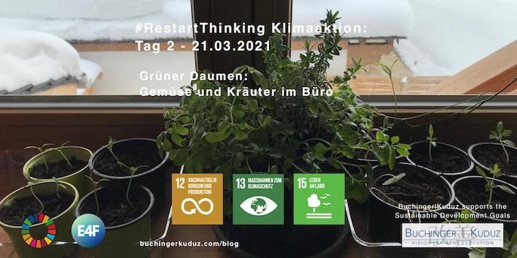 03_BuchingerKuduz_Klimaaktion-Gruener-Daumen-im-Büro
